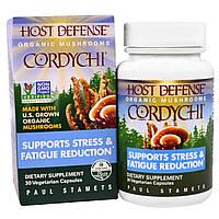 """Fungi Perfecti, """"Кордивик для защиты организма"""" из серии """"Органические грибы для защиты организма"""", органический грибной препарат для снятия стресса"""