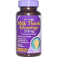 """Natrol, """"Польза молочного чертополоха"""", 525 мг, 60 капсул на растительной основе, купить, цена, отзывы"""