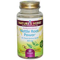 Nature's Herbs, Корень крапивы - сила, 300 мг, 60 капсул, купить, цена, отзывы