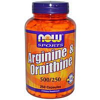 Now Foods, Arginine & Ornithine, 500/250, 250 капсул, купить, цена, отзывы