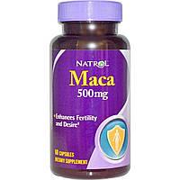 Natrol, Maкa, 500 мг, 60 капсул, купить, цена, отзывы