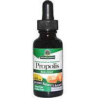Nature's Answer, Прополис, без спирта, 2000 мг, 1 жидкая унция (30 мл), купить, цена, отзывы