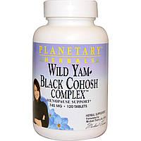 Planetary Herbals, Дикий ямс – комплекс с клопогоном кистевидным, 740 мг, 120 таблеток, купить, цена, отзывы
