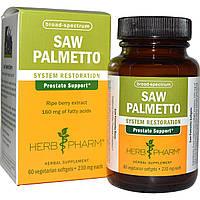 Herb Pharm, Экстракт пальмы сереноа, 230 мг, 60 вегетерианских мягких капсул, купить, цена, отзывы