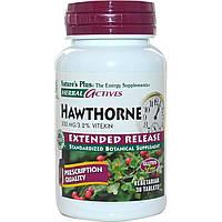 Nature's Plus, Растительная активность, хауторн, замедленное высвобождение, 300 мг, 30 вегетарианских таблеток, купить, цена, отзывы