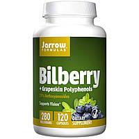 Jarrow Formulas, Комплекс черники и полифенолов из кожуры винограда, 280 мг, 120 овощных капсул, купить, цена, отзывы