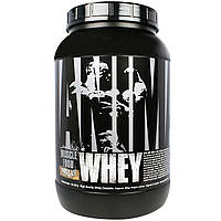 Universal Nutrition, Animal Whey, Muscle Food, Chocolate Coconut, 2 lbs (907 g), купить, цена, отзывы