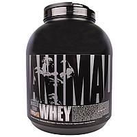 """Universal Nutrition, """"Животная сыворотка"""", сывороточный белок для мышц со вкусом шоколада и кокоса, 4 фунта (1,81 кг), купить, цена, отзывы"""