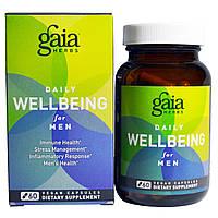 Gaia Herbs, Ежедневное хорошее самочувствие мужчин, 60 вегетарианских капсул, купить, цена, отзывы