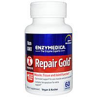 Enzymedica, Repair Gold, 60 капсул, купить, цена, отзывы