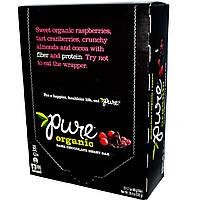 Pure Bar, Чисто органический батончик с фруктами и темным шоколадом, 12 шт по 48 г каждый, купить, цена, отзывы