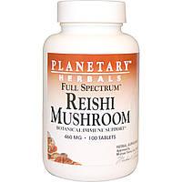 Planetary Herbals, Гриб рейши (трутовик лакированный), полный спектр, 460 мг, 100 таблеток, купить, цена, отзывы