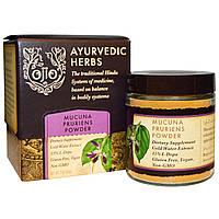 Ojio, Аюрведические травы, мукуна жгучая молотая, 2 унции (56 г), купить, цена, отзывы