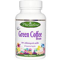 Paradise Herbs, Paradise Herbs, зеленые кофейные бобы, 60 вегетарианских капсул, купить, цена, отзывы