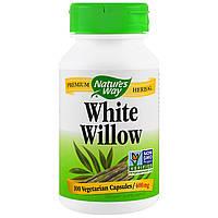 Nature's Way, Ива белая, 400 мг, 100 вегетарианских капсул, купить, цена, отзывы