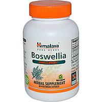 Himalaya Herbal Healthcare, Босвелия, 60вегетарианских капсул, купить, цена, отзывы
