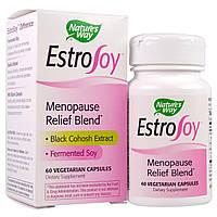 Nature's Way, EstroSoy, комплекс для облегчения протекания менопаузы, 60 растительных капсул
