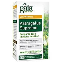 Gaia Herbs, DailyWellness, астрагал, 60 вегетарианских жидких фито-капсул, купить, цена, отзывы