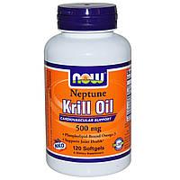 Now Foods, Рыбий жир из криля Нептун (NKO), 500 мг, 120 мягких желатиновых капсул, купить, цена, отзывы
