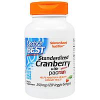 Doctor's Best, Стандартизированная клюква с пакраном, 250 мг, 120 вегетарианских мягких желатиновых капсул, купить, цена, отзывы