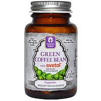 Genesis Today, Зеленые кофейные бобы, Светол, Чистая продукция, 60 капсул, купить, цена, отзывы