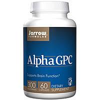 Jarrow Formulas, Альфа GPC 300, 300 мг, 60 капсул, Вегетарианская пищевая добавка, БАД, купить, цена, отзывы
