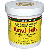Y.S. Eco Bee Farms, Мед с Маточным Молочком, 675 мг, 21.0 унций (595 г), купить, цена, отзывы