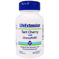 Life Extension, CherryPure, экстракт вишни, 60 вегетарианских капсул, купить, цена, отзывы