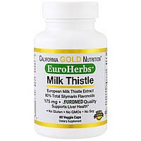 California Gold Nutrition, EuroHerbs, European, экстракт молочного чертополоха, без ГМО, клиническая сила, 60 вегетарианских капсул, купить, цена,