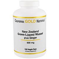 California Gold Nutrition, Новозеландский зеленогубый моллюск с имбирем, 500 мг, 240 капсул в растительной оболочке, купить, цена, отзывы