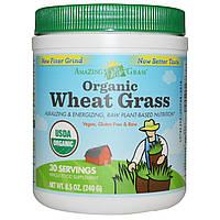 Amazing Grass, Органические ростки пшеницы, 8.5 унций (240 г), купить, цена, отзывы