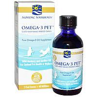 Nordic Naturals, Омега-3 для питомцев, для кошек и небольших собак, 2 жидких унции (60 мл), купить, цена, отзывы