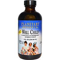 Planetary Herbals, Well Child, растительный сироп с эхинацеей и бузиной, без спирта, 236,56 мл, купить, цена, отзывы