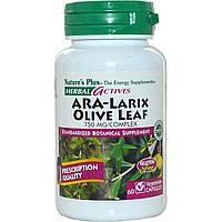 Nature's Plus, Herbal Actives, АРА-комплекс из лиственницы и листа оливкового дерева, 750 мг, 60 вегетарианских капсул, купить, цена, отзывы