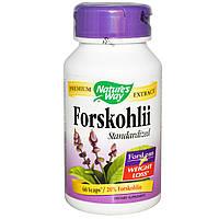 Nature's Way, ForsLean - стандартизованный экстракт форсколина, 60 Капсул, купить, цена, отзывы