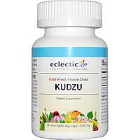 Eclectic Institute, Кудзу, 450 мг, 90 вегетарианских капсул, купить, цена, отзывы