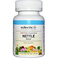 Eclectic Institute, Корень крапивы, сырой, 250 мг, 90 вегетарианских капсул без ГМО, купить, цена, отзывы
