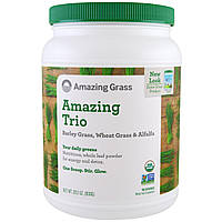 Amazing Grass, The Amazing Trio, Barley Grass & Wheat Grass & Alfalfa, 28.2 oz (800 g), купить, цена, отзывы