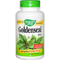 Nature's Way, Гидрастис канадский, лекарственное растение, 180 капсул, купить, цена, отзывы