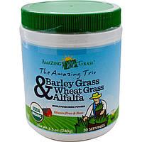 Amazing Grass, Восхитительное трио, зеленые побеги ячменя и пшеницы с люцерной, 8,5 унции (240 г), купить, цена, отзывы