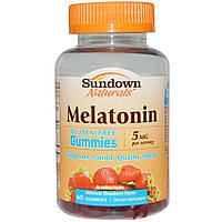 Sundown Naturals, Мелатониновые жевачки, вкусный клубничный аромат, 5 мг, 60 жвачки, купить, цена, отзывы