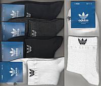 Носки мужские спортивные х/б с сеткой Adidas, Originals, 41-46 размер, средние, ассорти, 664