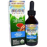 """Fungi Perfecti, """"Дыхательный сбор для защиты организма"""" из серии """"Грибы для защиты организма"""", органический грибной препарат для поддержания здоровья,"""