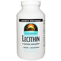 Source Naturals, Лецитин, 200 гелевых капсул, купить, цена, отзывы