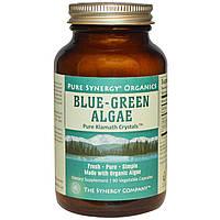 The Synergy Company, Натуральные сине-зеленые водоросли, 90 капсул на растительной основе