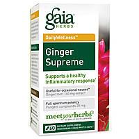 Gaia Herbs, DailyWellness, имбирь максимальный 60 вегетарианских жидких фито-капсул