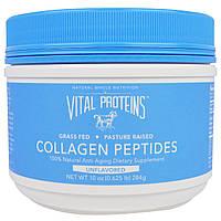 Vital Proteins, Пептиды коллагена, без ароматизаторов, 10 унций (284 г)
