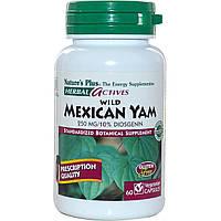 Nature's Plus, Herbal Actives, Дикий мексиканский ямс, 250 мг, 60 растительных капсул