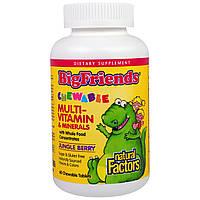 """Natural Factors, """"Большие друзья"""", жевательный мультивитаминный комплекс с минералами, со вкусом ягод из джунглей, 60 жевательных таблеток"""