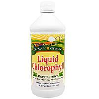 Sunny Green, Жидкий хлорофилл, перечная мята, 100 мг, 16.2 жид.унции(480 мл)